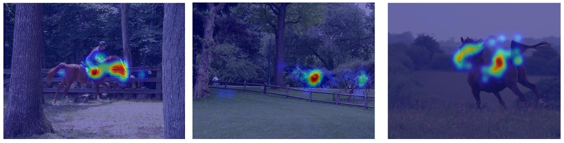 Eye-tracking data and attention  CNNs in object recognition